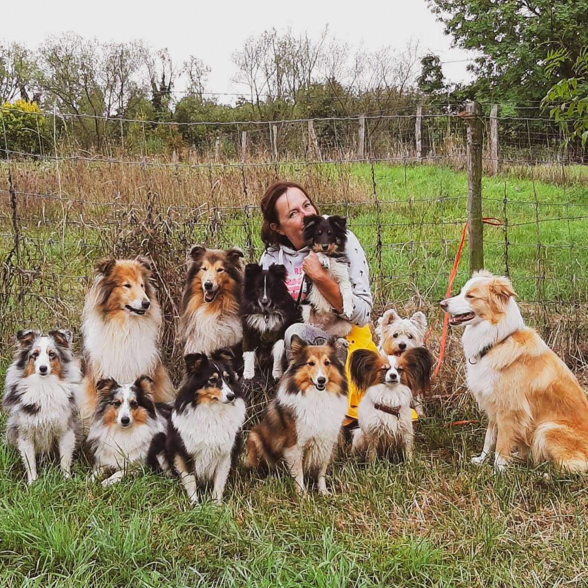 11 Hunde Sept.19